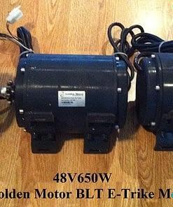 500 Watt Trike Motor