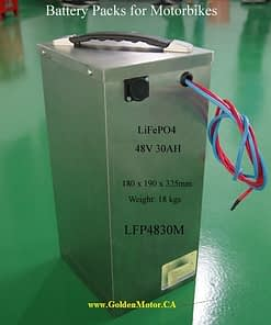 48V30AH LiFePO4 Battery in a Stainless Steel Case