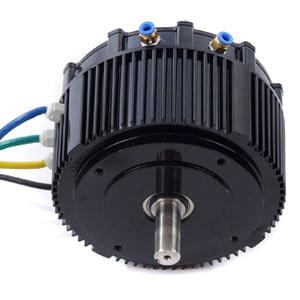 Miraculous 48 Volt 5Kw Bldc Motor Liquid Cooled Golden Motor Wiring Digital Resources Ommitdefiancerspsorg